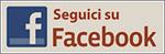 fb widget