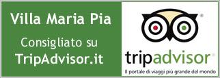 tripadvisor riconoscimento copia